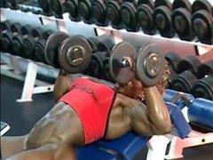 Gym Heat 3.7